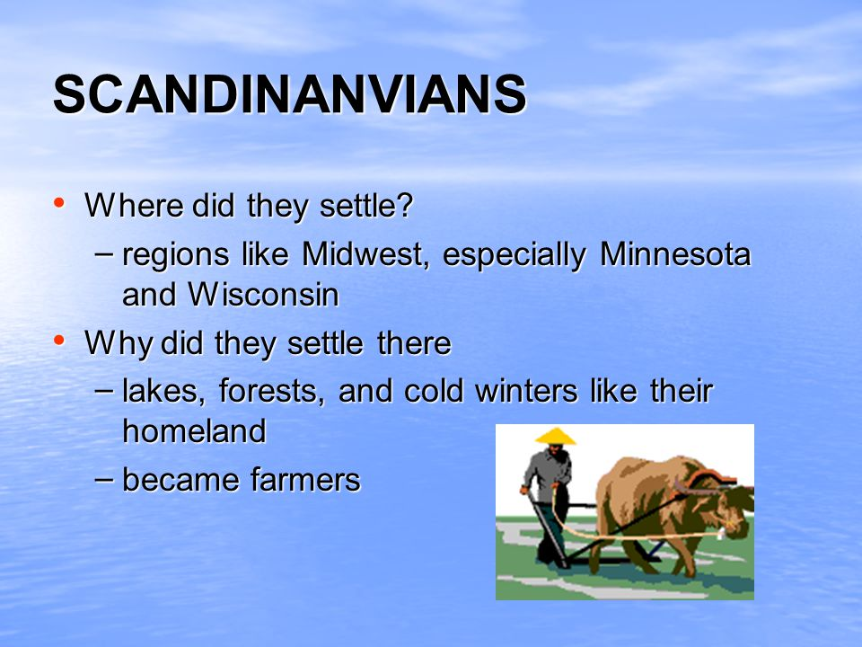 SCANDINANVIANS Where did they settle? Where did they settle? – regions like Midwest, especially Minnesota and Wisconsin Why did they settle there Why