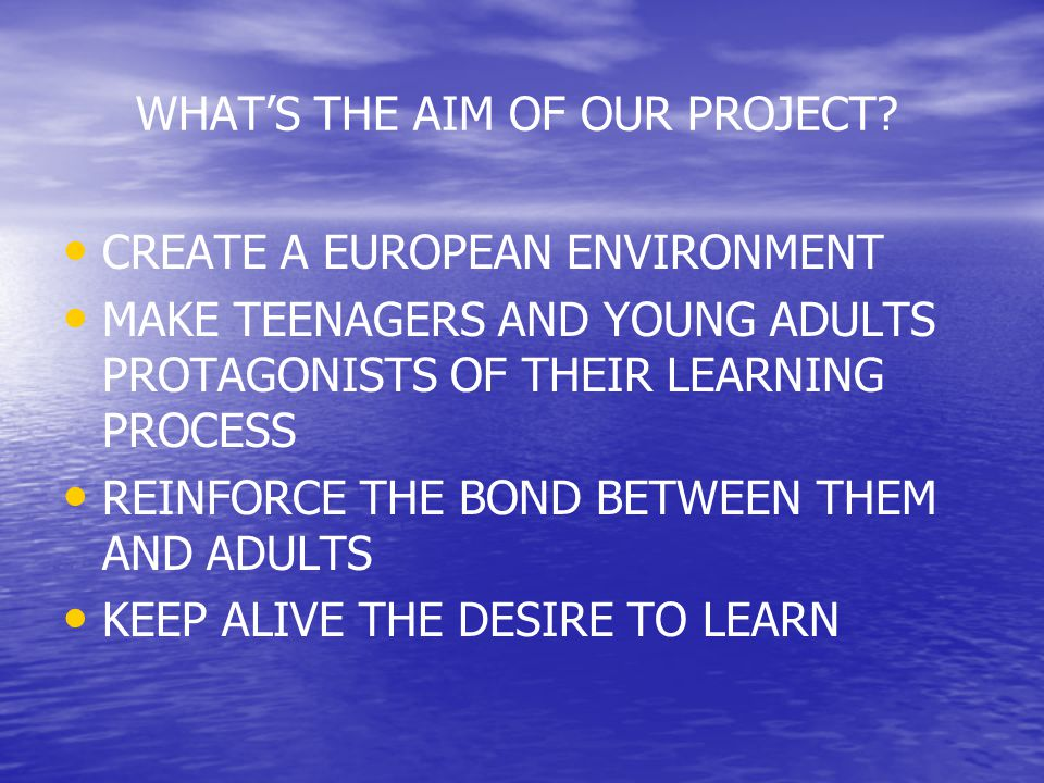 HOW? EXCHANGES AMONG PARTNERS SHARING REFLECTIONS SHARING ACTIONS