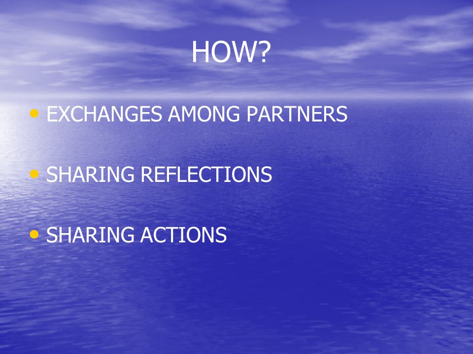 HOW EXCHANGES AMONG PARTNERS SHARING REFLECTIONS SHARING ACTIONS