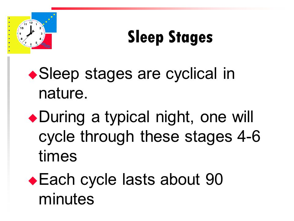 Sleep Stages u Sleep stages are cyclical in nature.