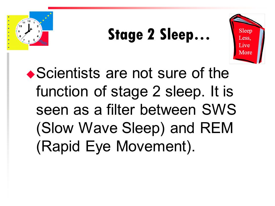 Stage 2 Sleep… u Scientists are not sure of the function of stage 2 sleep.