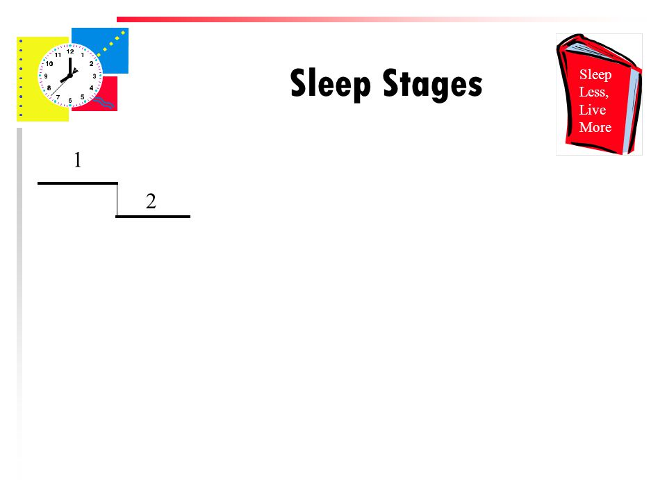 Sleep Stages 1 2 Sleep Less, Live More