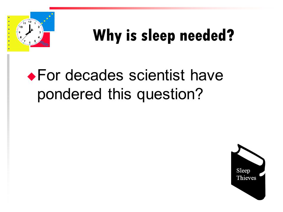 Why is sleep needed u For decades scientist have pondered this question Sleep Thieves