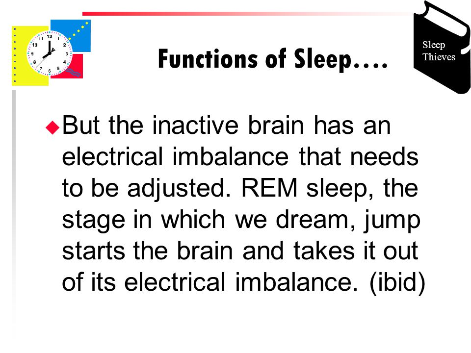 Functions of Sleep….