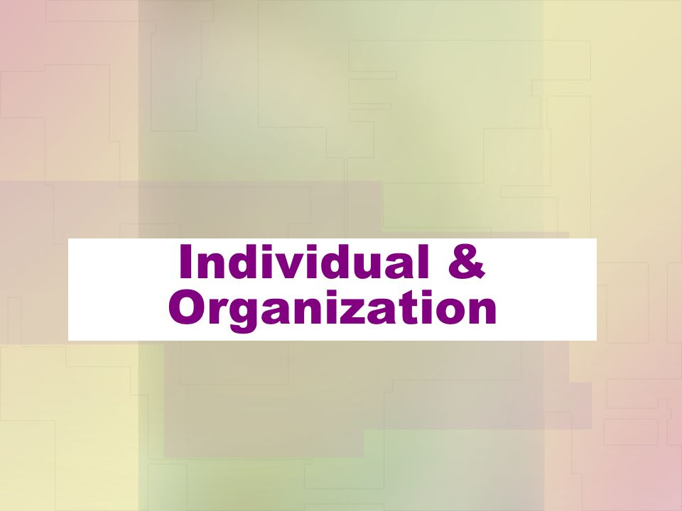 Individual & Organization
