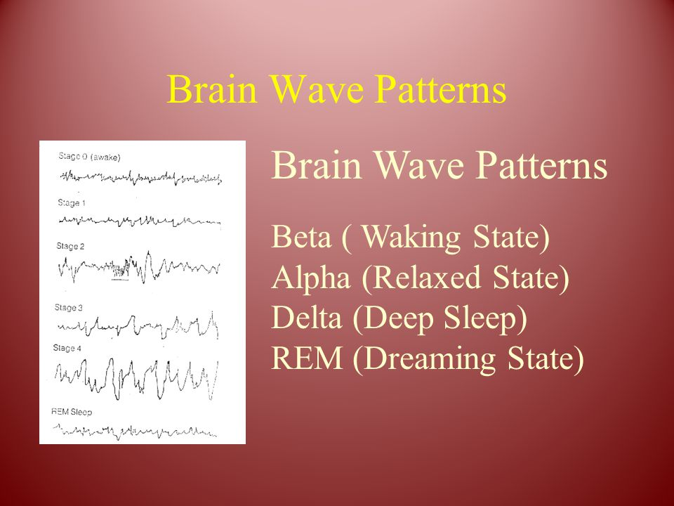 Brain Wave Patterns Beta ( Waking State) Alpha (Relaxed State) Delta (Deep Sleep) REM (Dreaming State)