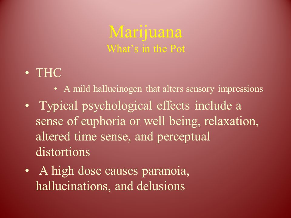 Marijuana What's in the Pot THC A mild hallucinogen that alters sensory impressions Typical psychological effects include a sense of euphoria or well