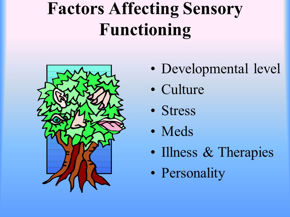 Factors Affecting Sensory Functioning Developmental level Culture Stress Meds Illness & Therapies Personality