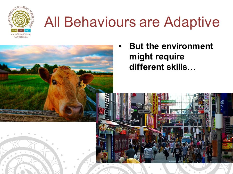 All Behaviours are Adaptive But the environment might require different skills…