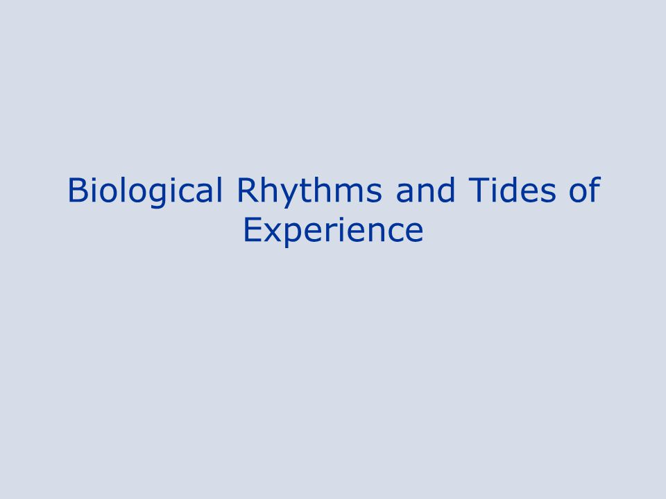 Biological Rhythms and Tides of Experience