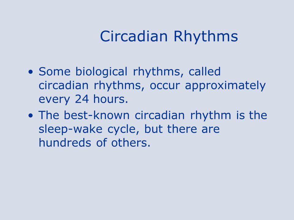 Circadian Rhythms Some biological rhythms, called circadian rhythms, occur approximately every 24 hours.