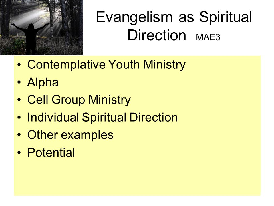 Evangelism as Spiritual Direction MAE3 Contemplative Youth Ministry Alpha Cell Group Ministry Individual Spiritual Direction Other examples Potential
