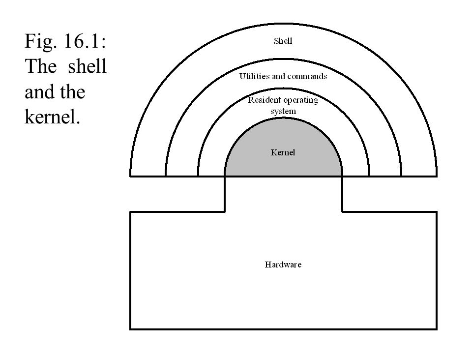 Fig. 16.1: The shell and the kernel.