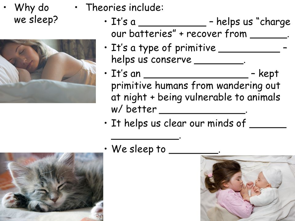 """Why do we sleep? Theories include: It's a ___________ – helps us """"charge our batteries"""" + recover from ______. It's a type of primitive __________ – h"""