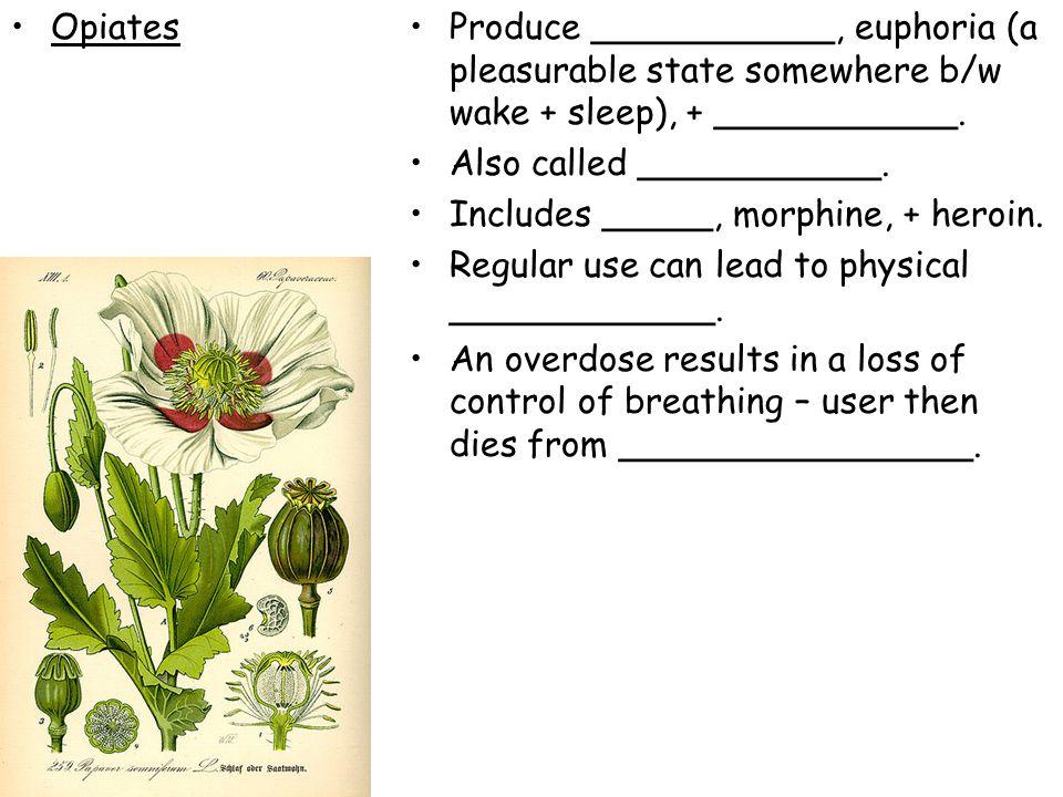 OpiatesProduce ___________, euphoria (a pleasurable state somewhere b/w wake + sleep), + ___________. Also called ___________. Includes _____, morphin