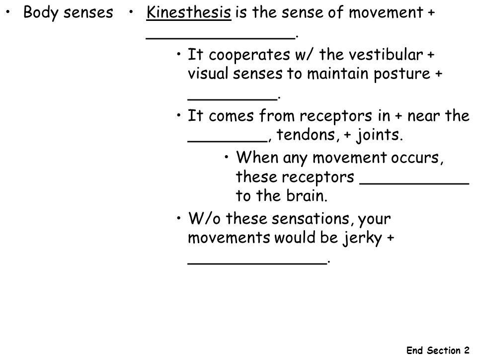 Body sensesKinesthesis is the sense of movement + _______________. It cooperates w/ the vestibular + visual senses to maintain posture + _________. It