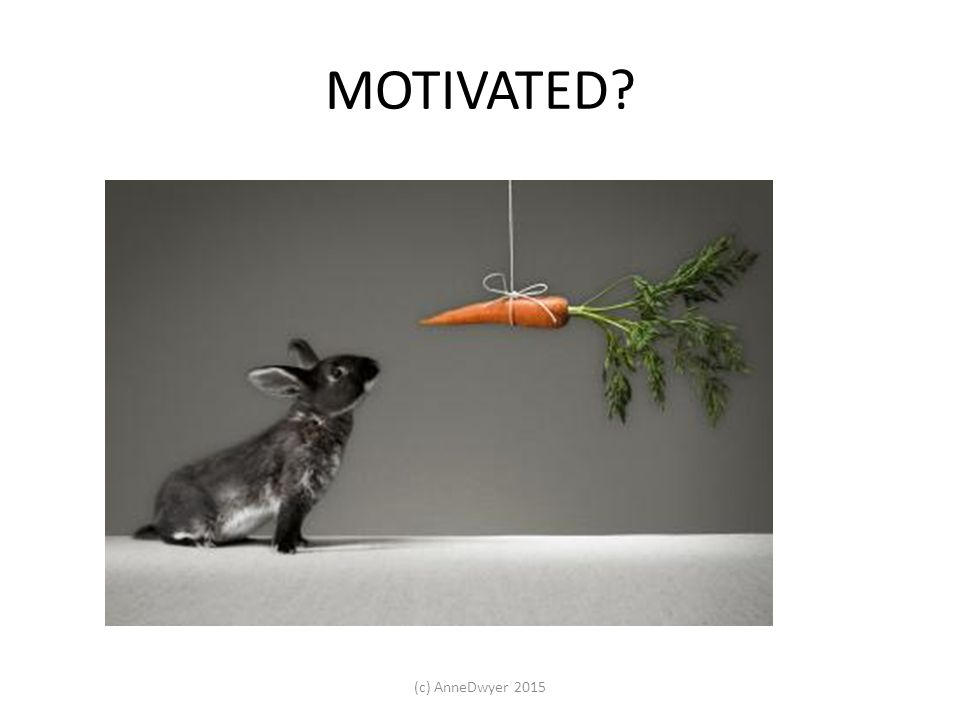 Research shows … M astery A utonomy P urpose https://www.youtube.com/watch?v=u6XAPnuFjJc Remember … only follow Motivation Theories that motivate YOU.