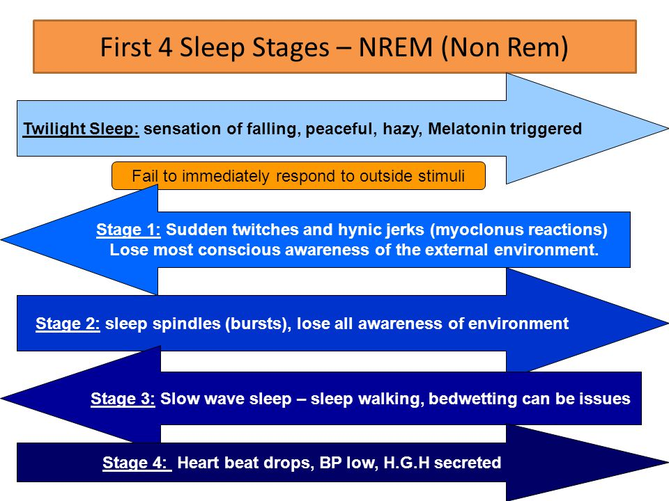 First 4 Sleep Stages – NREM (Non Rem) Twilight Sleep: sensation of falling, peaceful, hazy, Melatonin triggered Fail to immediately respond to outside stimuli Stage 1: Sudden twitches and hynic jerks (myoclonus reactions) Lose most conscious awareness of the external environment.