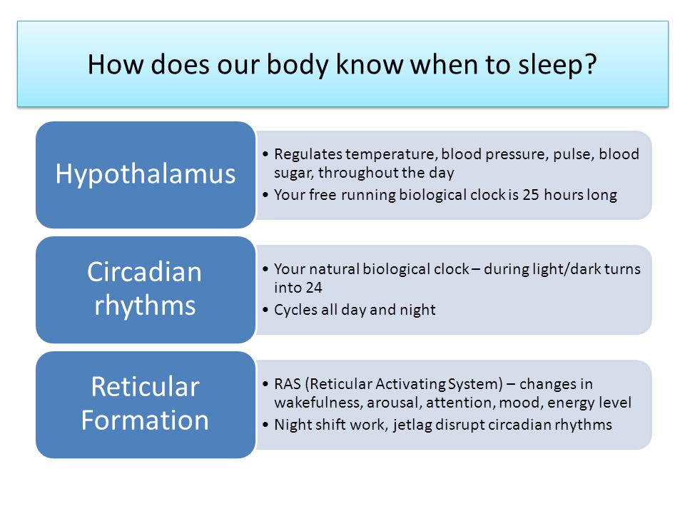 How does our body know when to sleep.