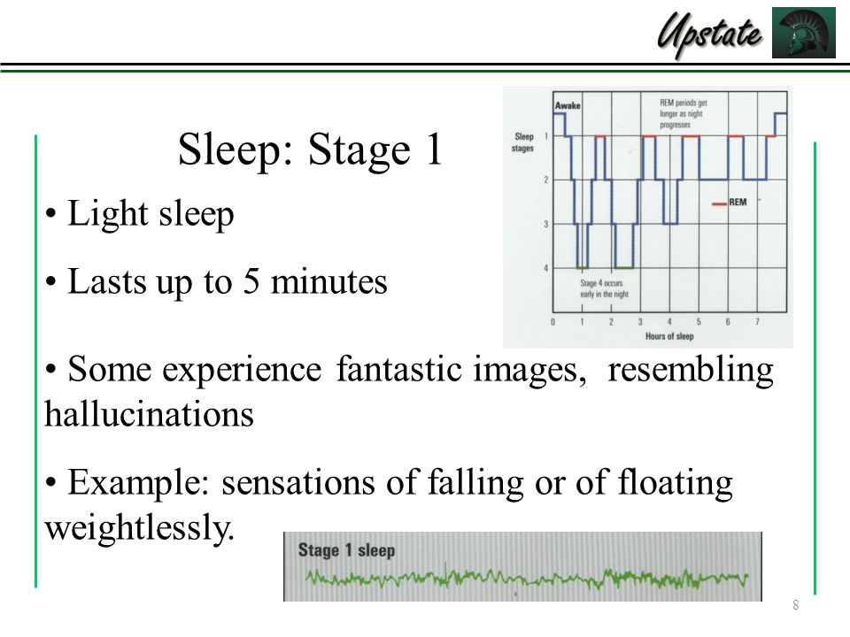 8 Light sleep Lasts up to 5 minutes Some experience fantastic images, resembling hallucinations Example: sensations of falling or of floating weightlessly.