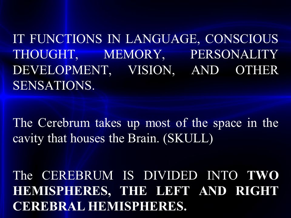 IT FUNCTIONS IN LANGUAGE, CONSCIOUS THOUGHT, MEMORY, PERSONALITY DEVELOPMENT, VISION, AND OTHER SENSATIONS. The Cerebrum takes up most of the space in