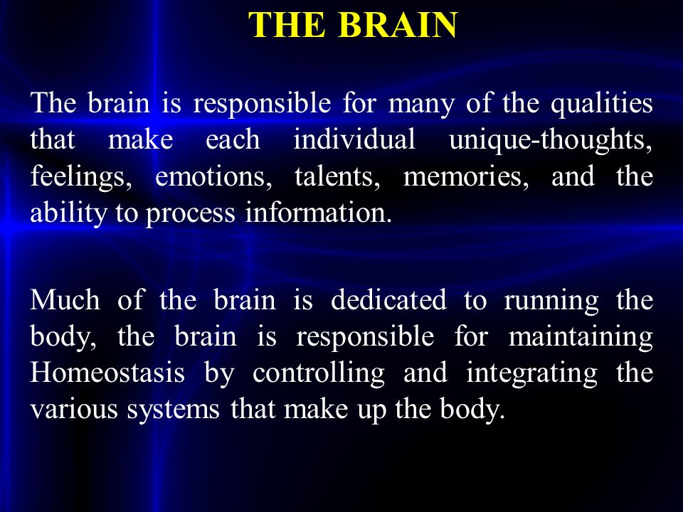 THE BRAIN The brain is responsible for many of the qualities that make each individual unique-thoughts, feelings, emotions, talents, memories, and the