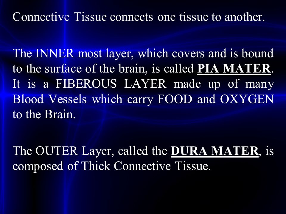 Connective Tissue connects one tissue to another. The INNER most layer, which covers and is bound to the surface of the brain, is called PIA MATER. It