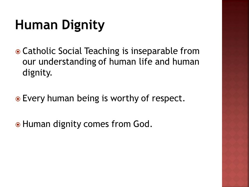  Catholic Social Teaching is inseparable from our understanding of human life and human dignity.  Every human being is worthy of respect.  Human di