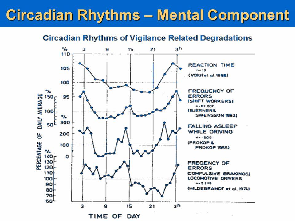 Circadian Rhythms – Mental Alertness