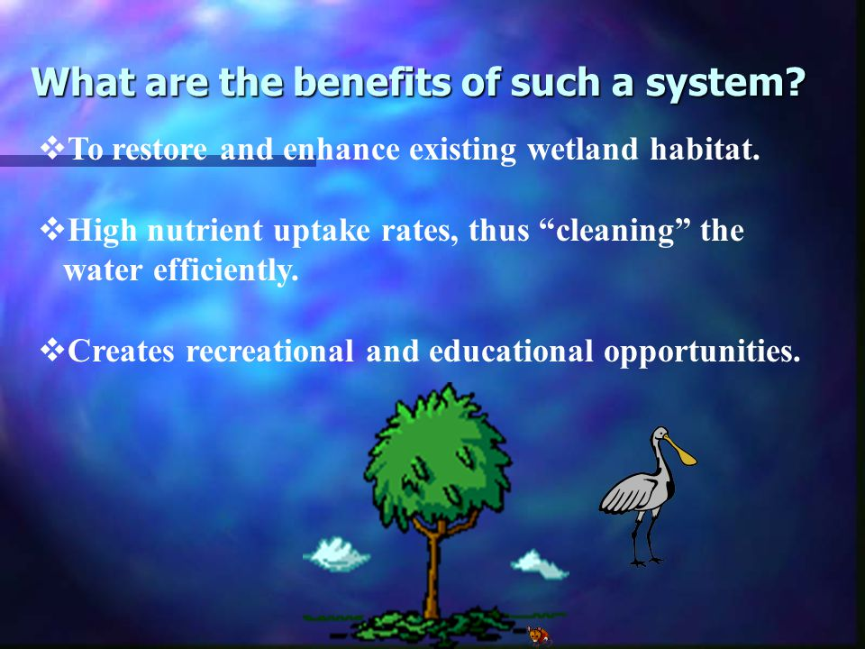 What are the benefits of such a system.  To restore and enhance existing wetland habitat.