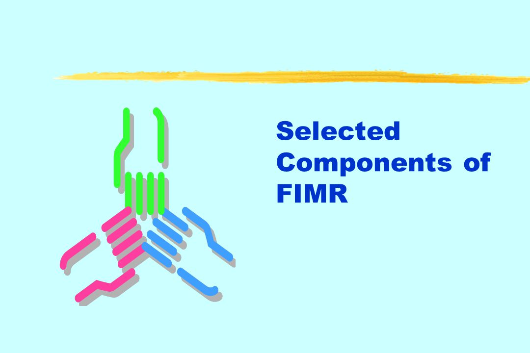 FIMR/CFR:Working Together Include a representative from the SIDS community on both teams.