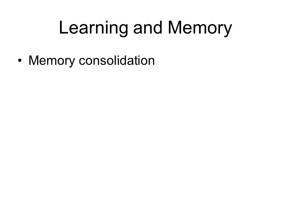 Learning and Memory Memory consolidation
