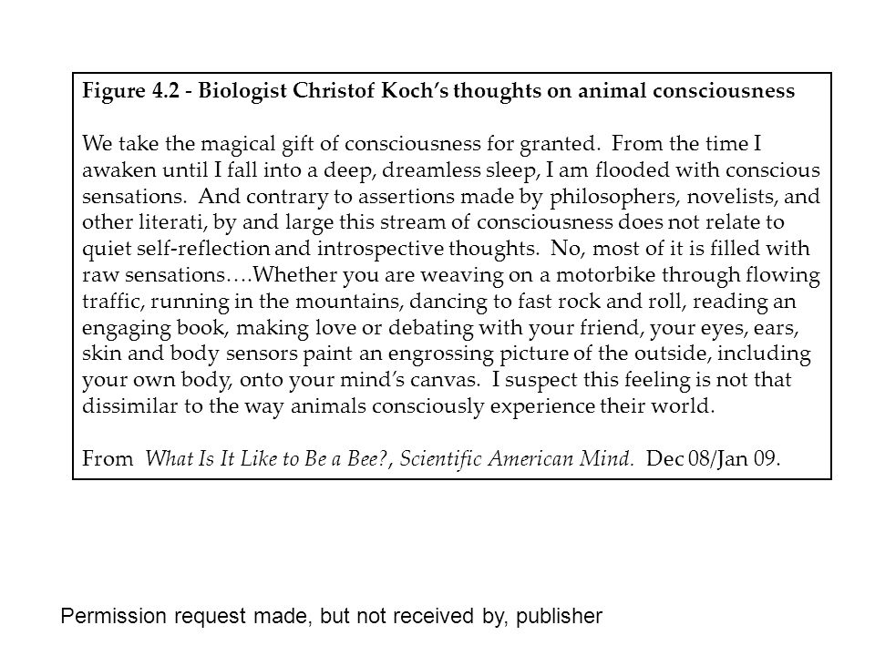 Figure 4.2 - Biologist Christof Koch's thoughts on animal consciousness We take the magical gift of consciousness for granted.