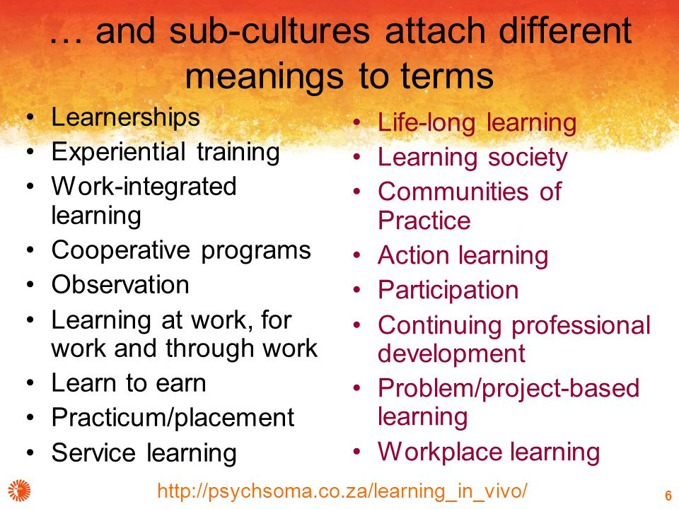 http://psychsoma.co.za/learning_in_vivo/ 6 … and sub-cultures attach different meanings to terms Learnerships Experiential training Work-integrated learning Cooperative programs Observation Learning at work, for work and through work Learn to earn Practicum/placement Service learning Life-long learning Learning society Communities of Practice Action learning Participation Continuing professional development Problem/project-based learning Workplace learning