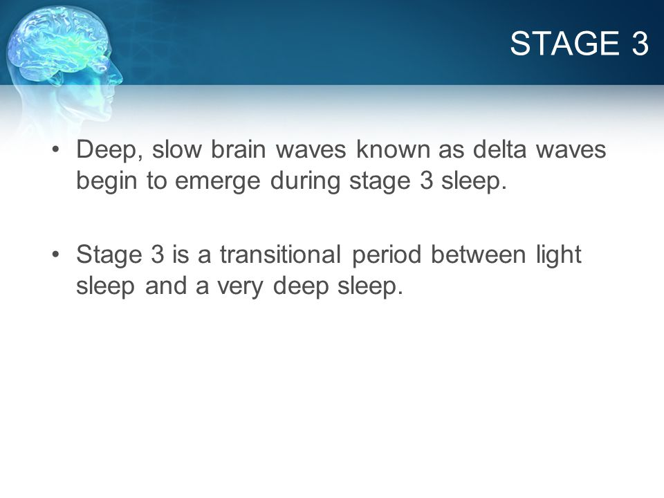 DELTA BRAIN WAVES Produced during deep sleep Associated with the release of Human Growth Hormone and Serotonin