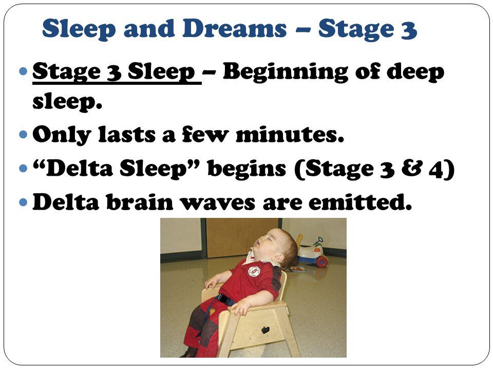 Sleep and Dreams – Stage 3 Stage 3 Sleep – Beginning of deep sleep.