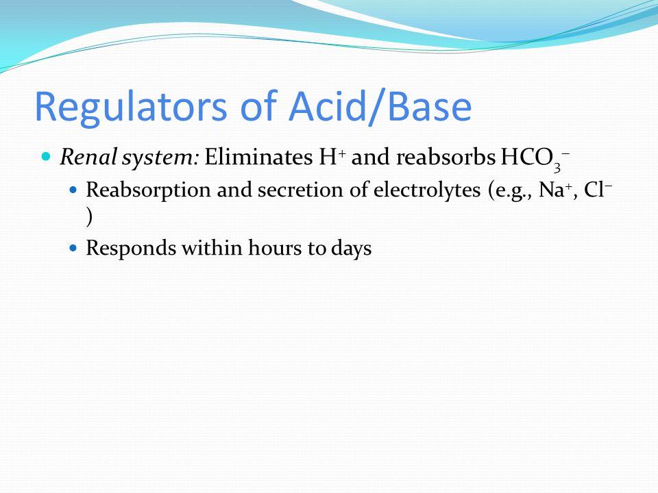 Regulators of Acid/Base Renal system: Eliminates H + and reabsorbs HCO 3  Reabsorption and secretion of electrolytes (e.g., Na +, Cl  ) Responds wit