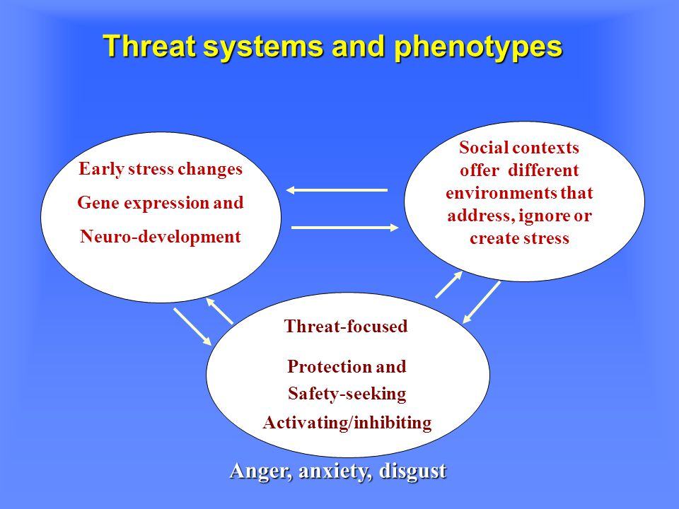 Threat systems and phenotypes Early stress changes Gene expression and Neuro-development Social contexts offer different environments that address, ignore or create stress Threat-focused Protection and Safety-seeking Activating/inhibiting Anger, anxiety, disgust