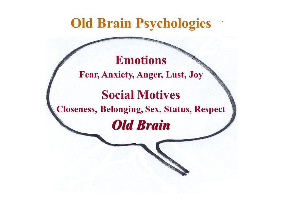 Sources of behaviour Emotions Fear, Anxiety, Anger, Lust, Joy Social Motives Closeness, Belonging, Sex, Status, Respect Old Brain Old Brain Psychologies