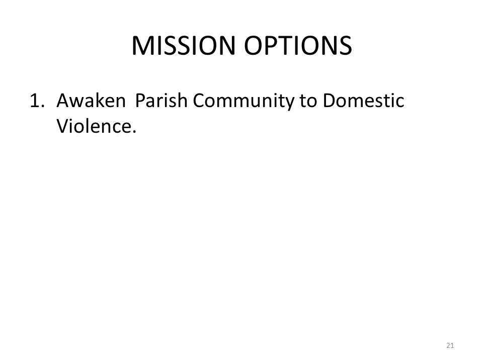 MISSION OPTIONS 1.Awaken Parish Community to Domestic Violence. 21
