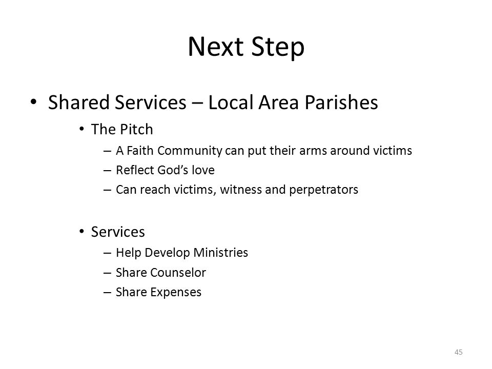 Next Step Shared Services – Local Area Parishes The Pitch – A Faith Community can put their arms around victims – Reflect God's love – Can reach victims, witness and perpetrators Services – Help Develop Ministries – Share Counselor – Share Expenses 45