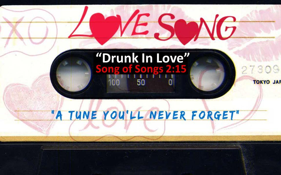 Drunk In Love Song of Songs 2:15