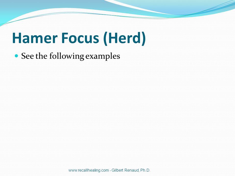 Hamer Focus (Herd) See the following examples www.recallhealing.com - Gilbert Renaud, Ph.D.