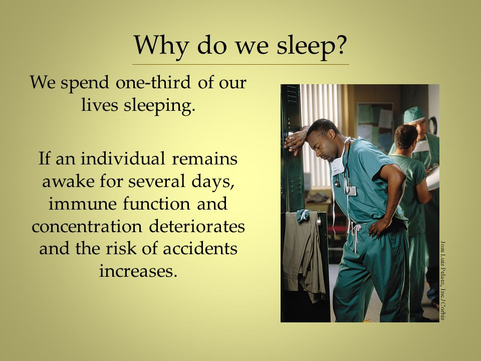 Why do we sleep? We spend one-third of our lives sleeping. If an individual remains awake for several days, immune function and concentration deterior