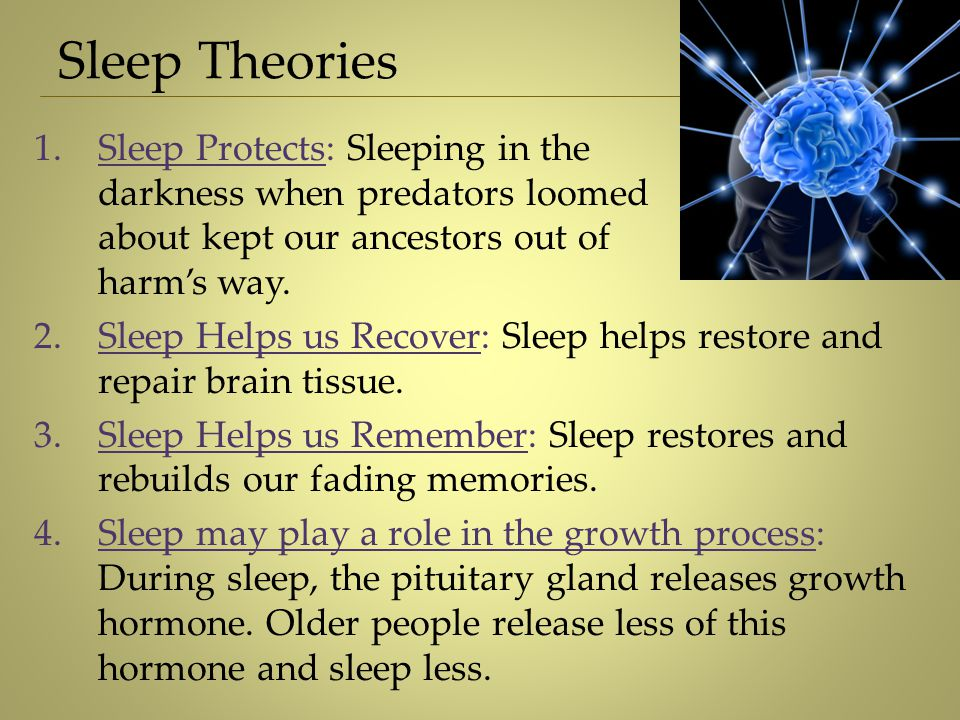 Sleep Theories 1.Sleep Protects: Sleeping in the darkness when predators loomed about kept our ancestors out of harm's way. 2.Sleep Helps us Recover: