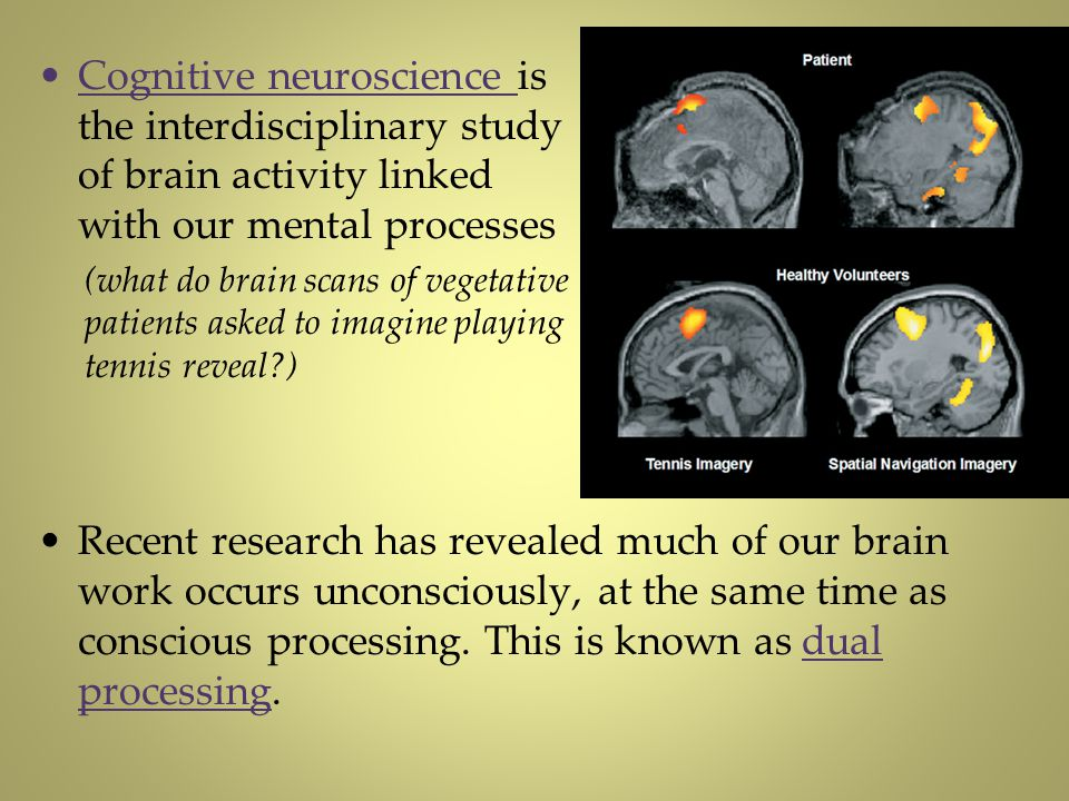 Cognitive neuroscience is the interdisciplinary study of brain activity linked with our mental processes (what do brain scans of vegetative patients a