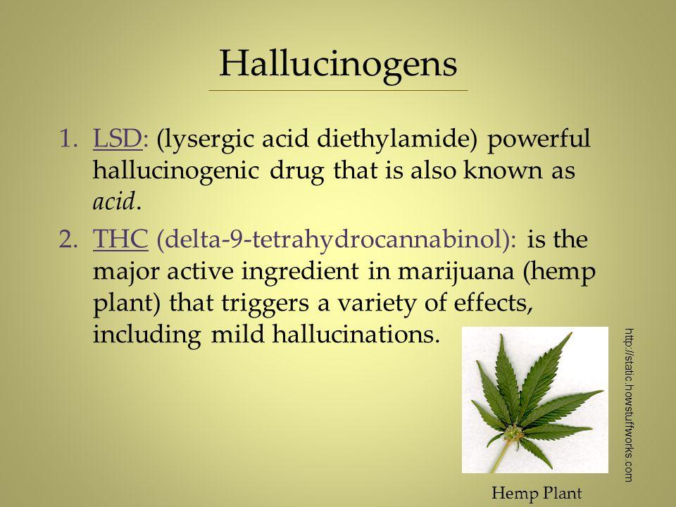 Hallucinogens 1.LSD: (lysergic acid diethylamide) powerful hallucinogenic drug that is also known as acid. 2.THC (delta-9-tetrahydrocannabinol): is th
