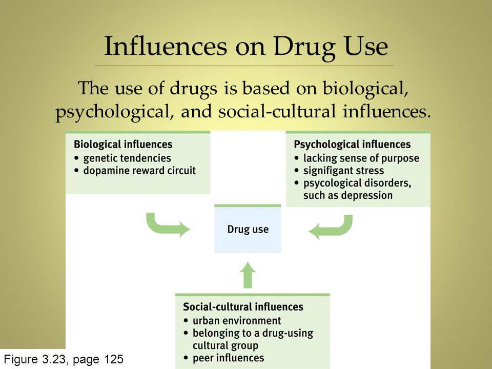 Influences on Drug Use The use of drugs is based on biological, psychological, and social-cultural influences. Figure 3.23, page 125