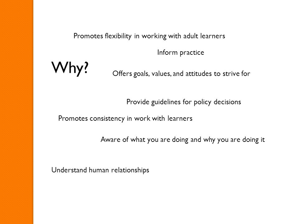 Why? Inform practice Provide guidelines for policy decisions Aware of what you are doing and why you are doing it Understand human relationships Promo