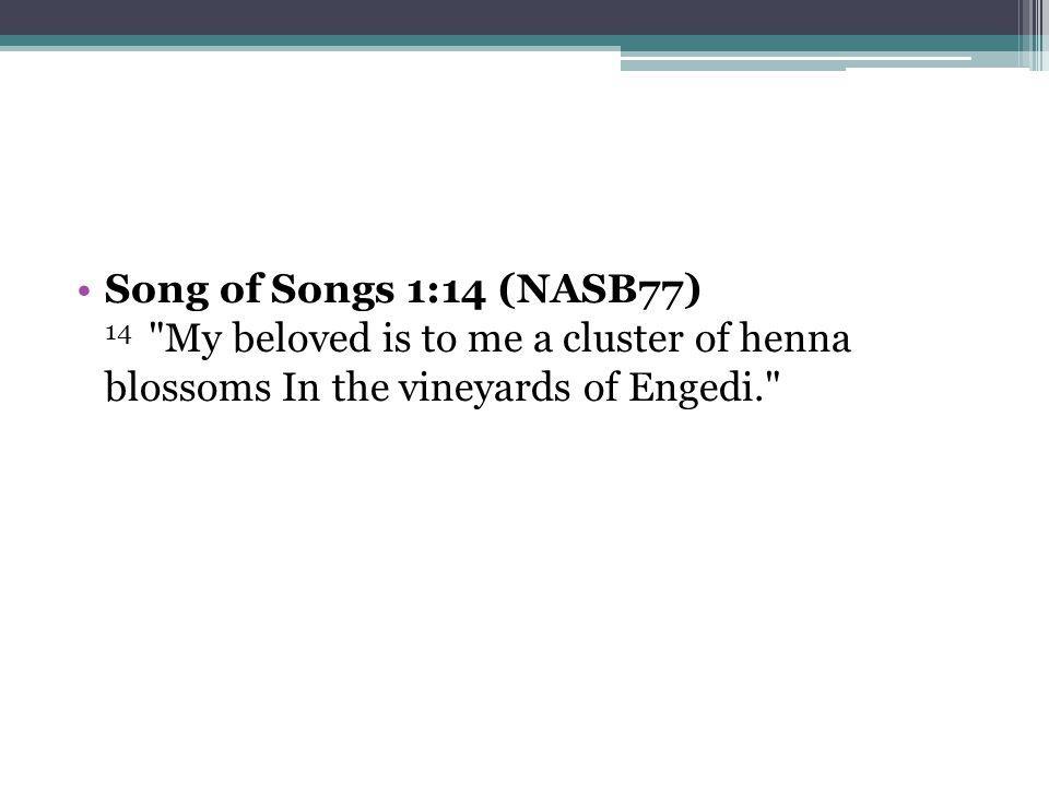 Song of Songs 1:14 (NASB77) 14